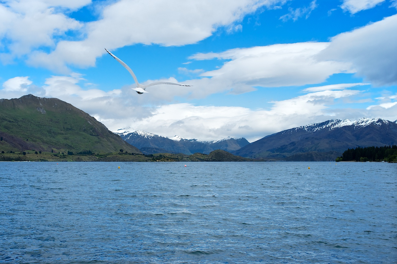 Flight above Lake Wanaka