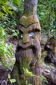 A clever tree sculpture in the rainforest (Queen Charlotte Sound, New Zealand)